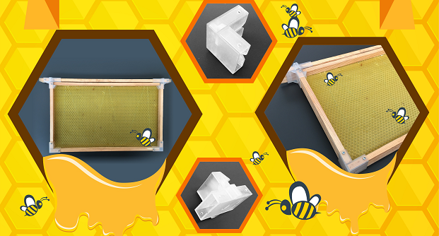 Bee Hive Frame Kit